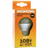 Лампа светодиодная E27 холодный свет 10W 220V ECO груша СТАРТ 1/10